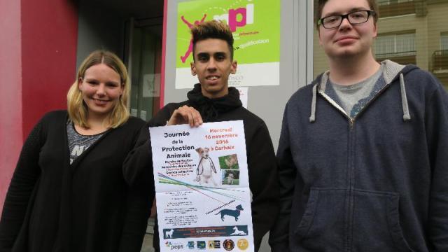 Sandra, Flavien et George organisent une Journée de la protection animale.